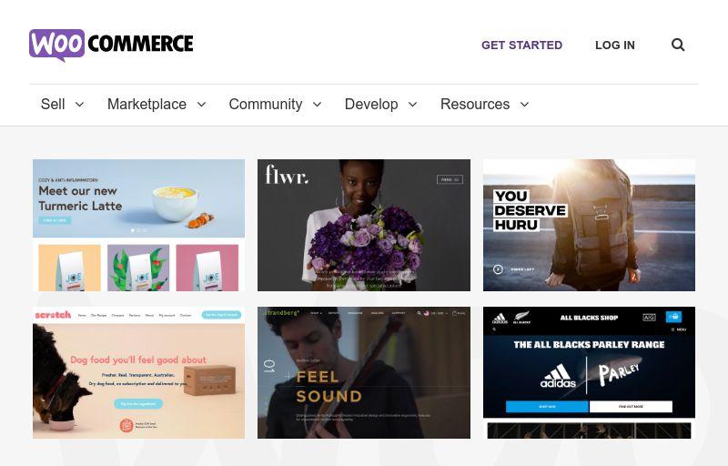 WooCommerce eCommerce Services